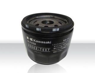 Lavina Oil Filter For Propane Machines K49065-7007